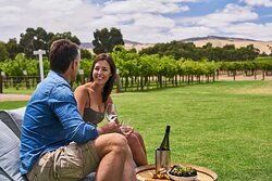 South Australian Winery