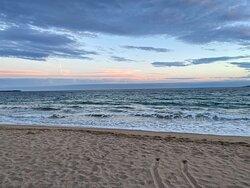 Devant Le Bénitier, une large plage et l'horizon de la mer.