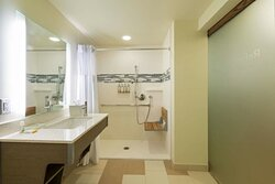 Accessible Room - Roll In Shower