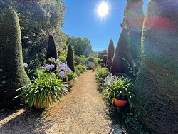 Jardin au soleil