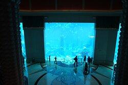 Traumurlaub im Atlantis 2021