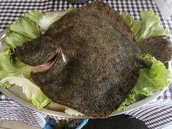 Rodaballo de 2,300 kg. Chipis plancha Chuleta de Cantabria Bonito encebollado
