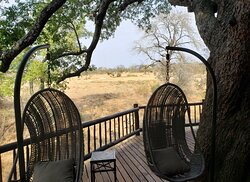 Tree house view for viewing wild life