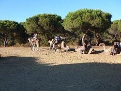 Momento en el que nos subíamos a los camellos
