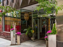 Ivy Hotel Exterior