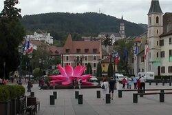 Giant Breathing Lotus Flower -  Annecy
