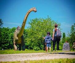 30m lang und 15m hoch ist unser Langhals (Diplodocus)