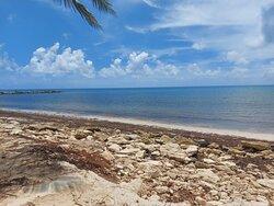 La playa llena de esas piedras, se ve horrible y con el sargazo huele muy mal
