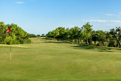 Golf - Fairway and Green