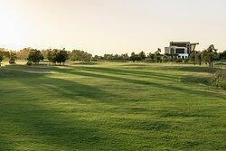 Golf - Fairway