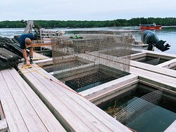 The oyster farm's cold storage.