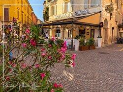 Ristorante Rubiani - a pochi passi dall'Arena di Verona