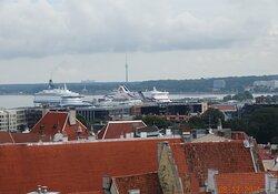 Θέα στο λιμάνι της πόλης Ταλίν από ψηλά.