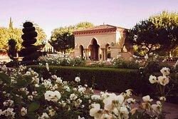 Aria Pavilion Garden