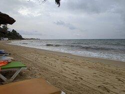 Судя по всему, пляж в какой-то мере убирается от мусора.