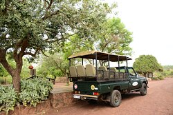 Take a game-drive on our privately owned reserve under the guidance of one of our highly skilled Rangers.