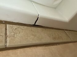 black mold in the white grout on the shower