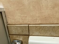 black mold on the wall and in grout