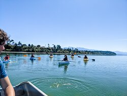 kayaking and paddle boarding in the bay