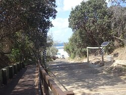 Beach entrance with dingo fence and grid