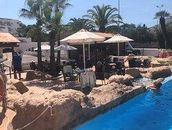 Pool area and pool bar
