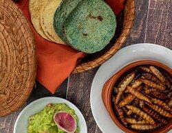 Gusanos de Maguey con guacamole