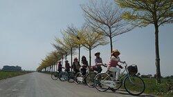 自行車道體驗