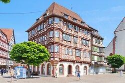 Palmsche House