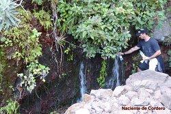 Cascada de Cordero