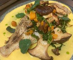 Roasted megrim sole, butternut veloute, roasted butternut, cabbage, wild mushrooms, parsley oil , nasturtium
