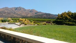 View from our tasting table