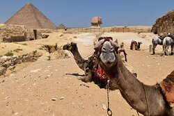 Riding camels around the Pyramids and ending at the Sphinx.