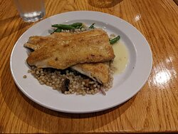 Rainbow Trout in too of Coucous and Green Beans and Mushrooms