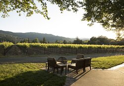 Vineyard View Terrace