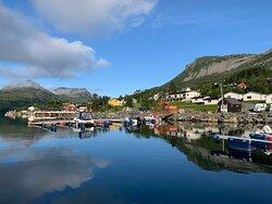 Gelände des Senja Fjordcamps vom Bootssteg im Fjord aus betrachtet (Juli 2021)