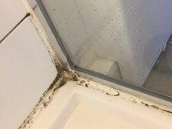Voici l'état insalubre et mal odorant de la douche de la chambre que cet établissement nous a proposé