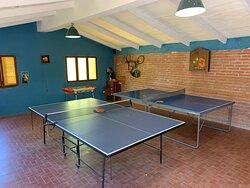 Ping pong y metegol