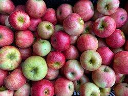 Apples grown at Cider Keg Farm Market