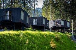 Chatky Tree houses