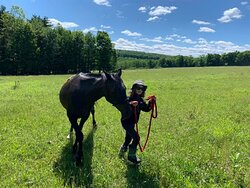 Visitors of all ages can enjoy our scenic hike accompanied by the horses.  Great for larger groups or folks that aren't ready to ride, this is a fantastic way to bond with our horses and enjoy the views.  Spectacular photo opportunities.