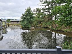 The lodge was spacious for two people. It had the comforts of a dishwasher and washer dryer. The deck had a beautiful view of the large pond that was home to a family of geese, ducks and rabbits. The hottub was wonderful and was serviced daily by the retreats staff. The log burner was used on the one day we had bad weather and it kept us cozy and warm. There was a large dedicated parking space right outside our door.
