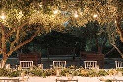 La Bougainville Restaurant - La Suite Hotel wedding