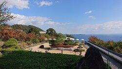日本庭園 天翔②