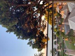 View through glass railing, sunrise