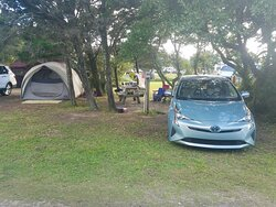 Sites are big enough for car, picnic table and tent