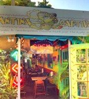 Cantina Captiva