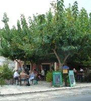 Petrino's Garden