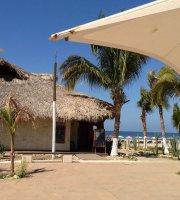 Tropical Surf Restaurant