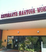 Mantova Wok