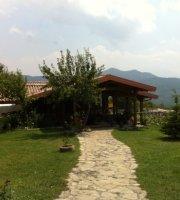 Villa Ribot